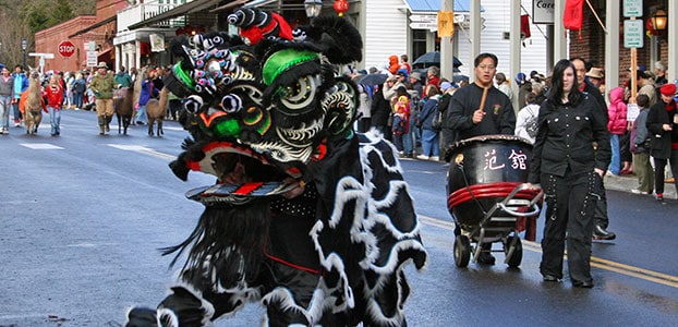 Chinese Dragon in a Parade