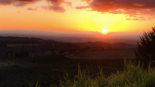 Applegate Valley Wine Trail